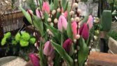 Atelier de décoration florale : tulipes